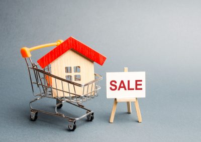 supermarket-cart-with-houses-and-a-sale-poster-YLCMSJ3-2